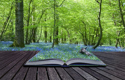 bakgrundsboken contents magical spill Arkivbilder