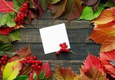 bakgrundsbrädet för 8 höst färgade träbland annat leaves för eps mappen Arkivbild
