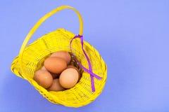 bakgrundsbröd bakar ihop white för skuggor för förberedelse för easter äggbakelser slapp Gul korg med fega ägg på violett bakgrun Fotografering för Bildbyråer