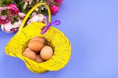 bakgrundsbröd bakar ihop white för skuggor för förberedelse för easter äggbakelser slapp Gul korg med fega ägg på violett bakgrun Royaltyfria Bilder