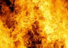 bakgrundsbrand Royaltyfri Bild