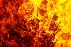 bakgrundsbrand flamm hög bildupplösning Original- flamma och grafisk effekt Fotografering för Bildbyråer