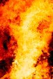 bakgrundsbrand flamm hög bildupplösning Original- flamma och grafisk effekt Arkivbild