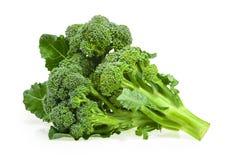 bakgrundsbroccoli isolerade white royaltyfri foto