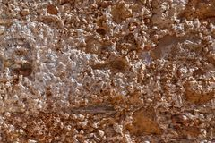 Bakgrundsbrunt förstorade stenväggen Arkivbilder