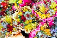 bakgrundsbuketter cards den dekorativa blom- vektorn för blommaillustration två Royaltyfri Foto
