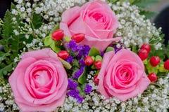 bakgrundsbuketter cards den dekorativa blom- vektorn för blommaillustration två Royaltyfri Bild