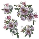 bakgrundsbuketter cards den dekorativa blom- vektorn för blommaillustration två Blommauppsättning av vattenfärgpioner, rosor och  Arkivbild