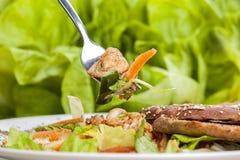 bakgrundsbunkehöna isolerade white för sallad för rice för parsleypersikastycken Fotografering för Bildbyråer