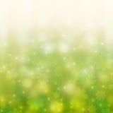 bakgrundschamomilesfjäder Royaltyfria Bilder
