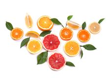bakgrundscitrusfrukter isolerade white Isolerade citrusfrukter Stycken av den isolerade citronen, den rosa grapefrukten och apels Arkivbilder