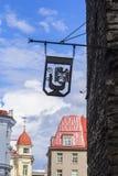 Bakgrundscityscapetecken med ilsken musa i Tallinn Arkivfoto
