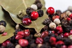 bakgrundscloseupkryddnejlikor torkade vita slappa kryddor för skugga En blandning av peppar Royaltyfria Bilder