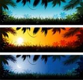 bakgrundsdjungel vektor illustrationer