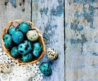 bakgrundseaster ägg ställde in tre Royaltyfri Fotografi
