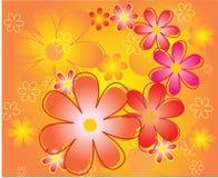bakgrundsfärgblommor Royaltyfri Foto