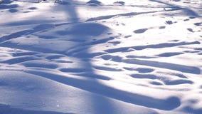 bakgrundsfotosemesterorten skidar snow tagen white bakgrundsfotosemesterorten skidar snow tagen white Ljus bakgrund för vinter Sä stock video
