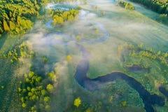 bakgrundsgreen låter vara lönnnatursommar våt Dimma över floden och gräsplanäng Arkivfoton