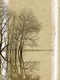 bakgrundsgrunge Royaltyfri Bild