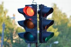 bakgrundsillustrationen isolerade ljus white för trafikvariantsvektor Royaltyfria Foton