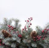 bakgrundsjultree Fotografering för Bildbyråer