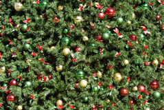 bakgrundsjultree Royaltyfri Bild