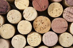 bakgrundskork avslutar wine Royaltyfria Foton