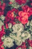 bakgrundskortet blommar rengöringsduk för tappning för hälsningssidamall universal Royaltyfri Fotografi