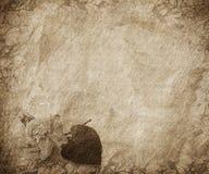 bakgrundskortlyckönskan Arkivbild