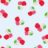 Bakgrundsmodell av den sunda organiska körsbäret för sommar Royaltyfria Foton