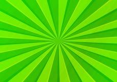 bakgrundsolivgrön Royaltyfri Foto