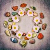 Bakgrundsramcirkeln som göras av färgrika havs- och flodstenar och rosa höft, blommar Royaltyfria Bilder