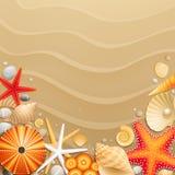 bakgrundssanden shells sjöstjärnor Arkivbild
