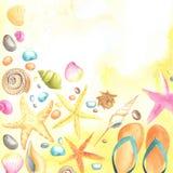 bakgrundssanden shells sjöstjärnor Royaltyfri Bild