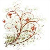 bakgrundsskönhet blommar grunge vektor illustrationer