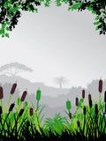 bakgrundsskognatur Fotografering för Bildbyråer