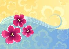 bakgrundssommar Royaltyfria Bilder