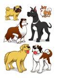 bakgrundstecknad filmdesignen dogs illustrationen Royaltyfri Fotografi