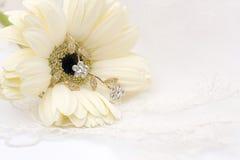 bakgrundstextilbröllop Royaltyfri Foto