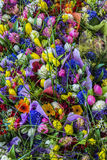 Bakgrundstextur av buketten av färgrika blommor Arkivfoton