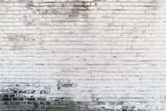 Bakgrundstextur av en gammal vit tegelstenvägg arkivfoton