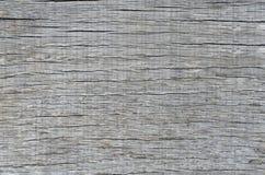 Bakgrundstextur av ett gammalt stycke av grått trä Fotografering för Bildbyråer