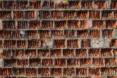 Bakgrundsvägg, orange ribbad tegelsten Arkivbild