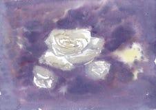 Bakgrundsvattenfärgultraviolet med några rosor Royaltyfri Bild