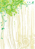 bakgrundsväxttextur Royaltyfria Foton