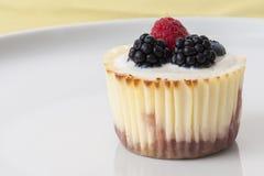Baking, Berries, Blackberries Royalty Free Stock Photography