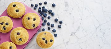 Baking Blueberry Muffins Background Banner Stock Photos