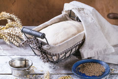 Baking bread Royalty Free Stock Photography