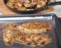 Baking Catfish Fillets Stock Photography
