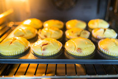Baking cheesecake muffins Stock Photos